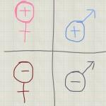 Female male icon chart
